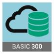Basic 300